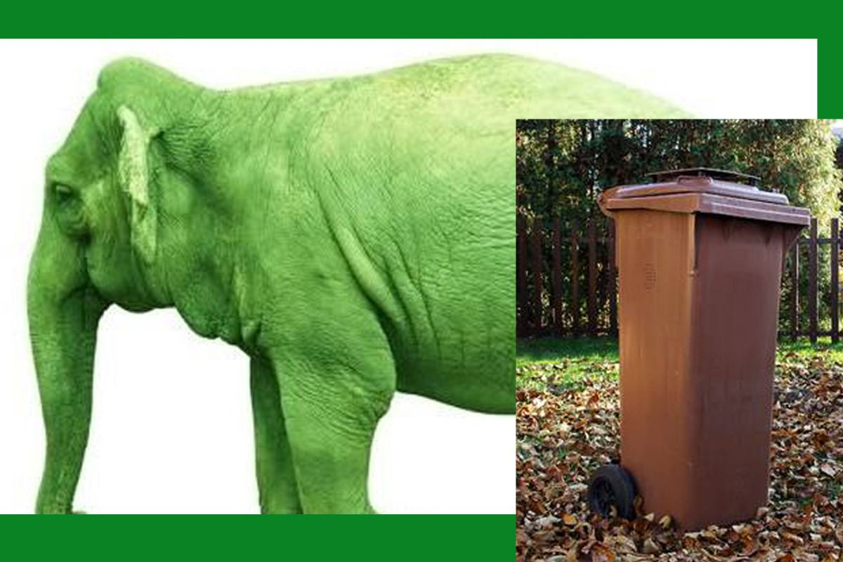 "Will the Council's new/old Brown Bin scheme be another ""Green Elephant""?"
